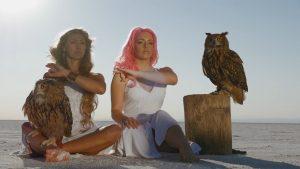 10. m ky owl
